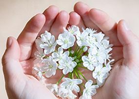 関西・大阪・神戸・阪神間の本気の結婚相談所の手作りのお世話が自慢です